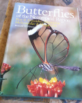 Classificados Grátis - Butterflies of the Neotropical Region,Part. II: Danaidae,Ith